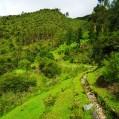 Camino al lado del Canal IncaD